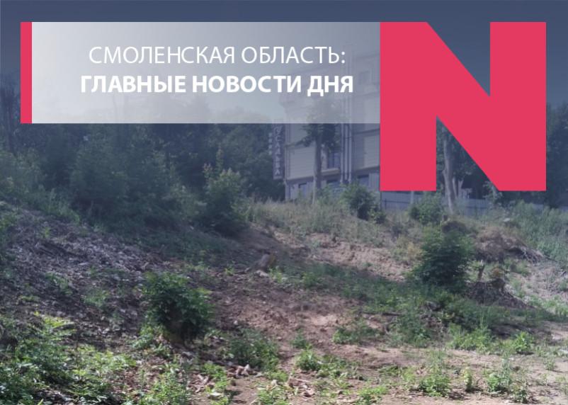 Орган в кустах, запах гнили в Сафоново и мост-долгострой в Вязьме: и целого года мало