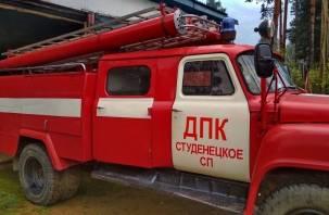 Пожарные добровольцы девять раз участвовали в тушении пожаров на Смоленщине за неделю