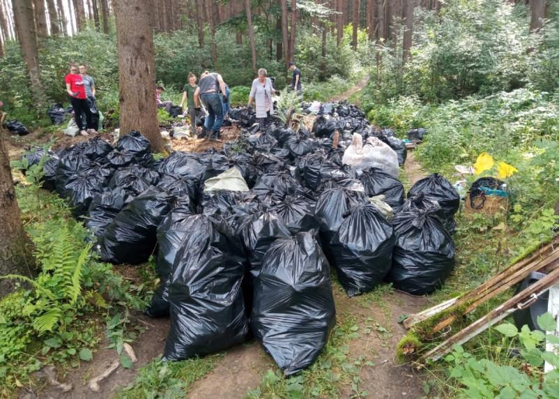 Активисты в Смоленске вывезли из леса в Колодне тонны мусора