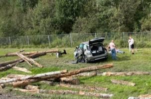 Подробности жуткого ДТП с тягачом с бревнами в Смоленской области