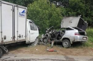 В Кардымовском районе в ДТП с ГАЗом погиб водитель ВАЗа