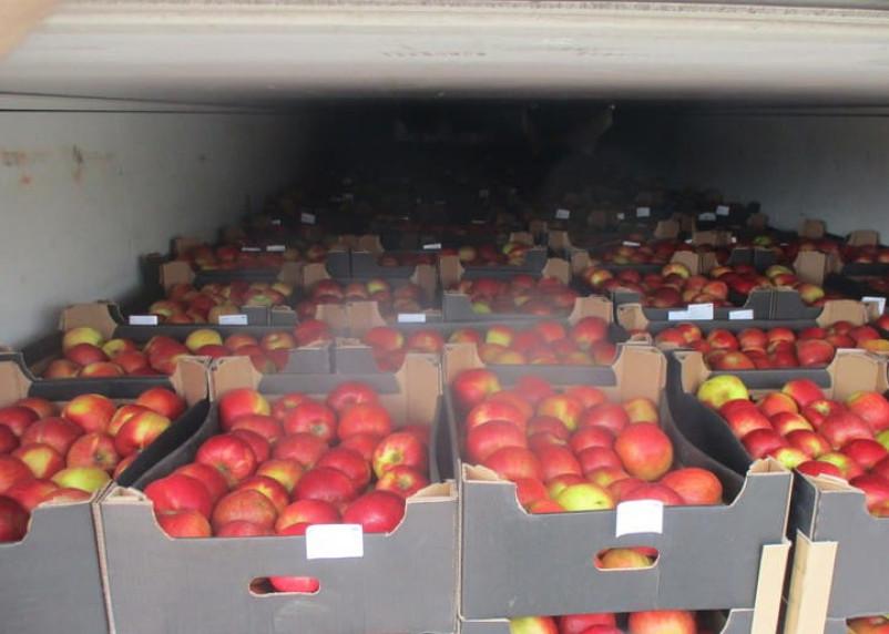 Яблоки вместо пива. В Руднянском районе задержали фуру с нелегальной продукцией