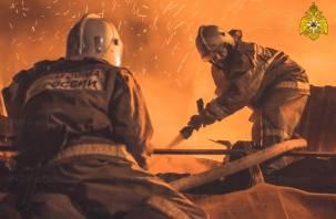 В Смоленской области при пожарах погибли 51 человек, шесть из них – дети