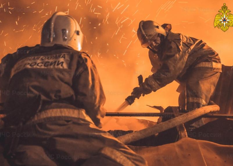 Россиян предупредили об осенних пожарах
