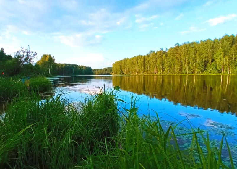 В Смоленской области 14 августа осадков не ожидается