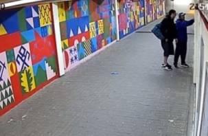 Вандалы, громившие «подземку» в Смоленске, попали на видео