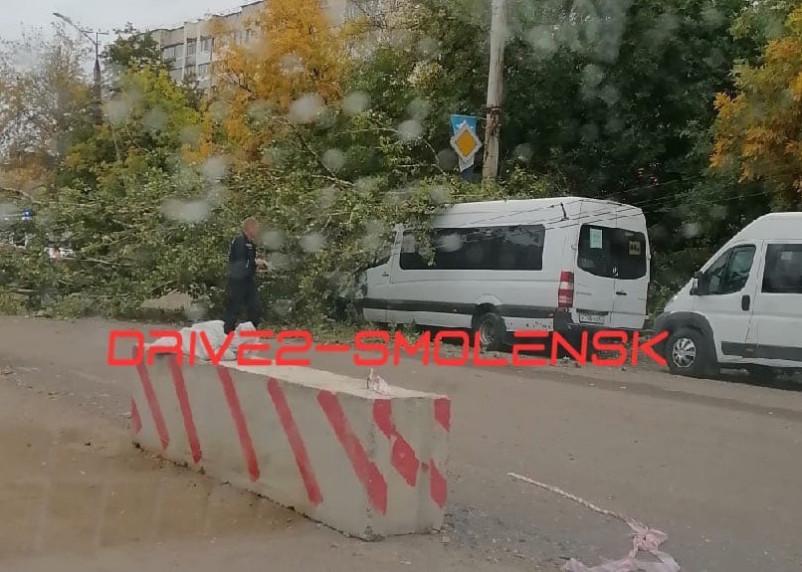 На улице Нормандии-Неман дерево рухнуло на маршрутку