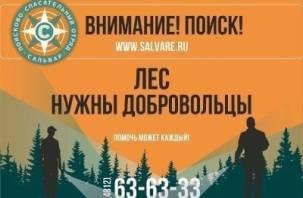 В Смоленской области объявили поиски пропавшего мужчины
