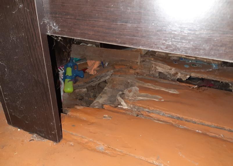 «В квартире жить невозможно и всем на нас наплевать». Смоленские чиновники не нашли денег на ремонт муниципального жилья