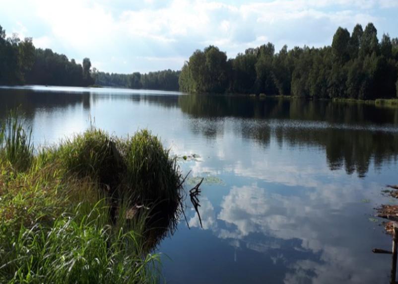 В Смоленской области хотят построить «Дом Василия Тёркина»