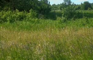 В Смоленской области оштрафовали собственницу зарастающего земельного участка сельхозназначения
