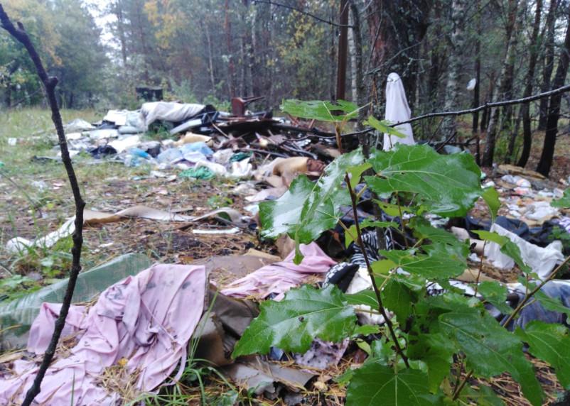 В Смоленском районе очередная несанкционированная свалка