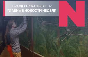 «Замороженный» зоопарк, инициатива в Рачевском овраге и вечнозеленый проспект Строителей