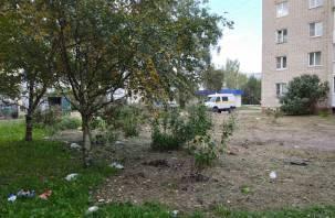 Сафоновцы жалуются на мусор