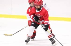 Как детский хоккей Смоленщины может выйти на российский уровень