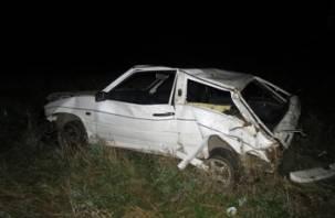 В Смоленской области ВАЗ вылетел в кювет. Пострадали два человека