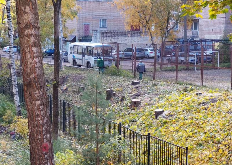 После жалобы Путину и в Smolnarod во дворе по ул.Козлова спилили аварийные деревья