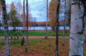 Облачно с прояснениями. Синоптики рассказали о погоде в Смоленской области 24 октября