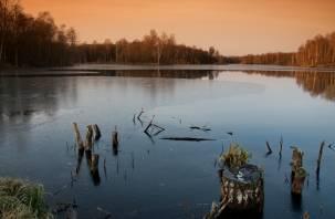 «Экологическим туризмом можно заниматься круглый год. В Смоленской области для этого есть все условия», — считают гиды и инструкторы