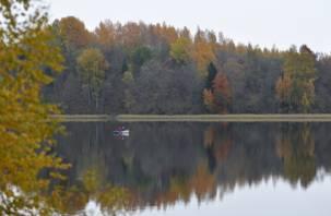 В Баклановском озере появился толстолобик. Он нужен, чтобы очистить воду