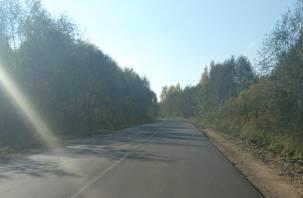 В Смоленской области завершается ремонт дороги, ведущей к границе с Республикой Беларусь