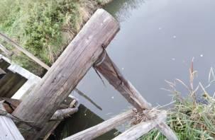 Чёрная река. Смогут ли очистить реку Вязьма?