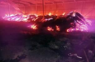 40 тонн древесного угля сгорело в Сафоновском районе