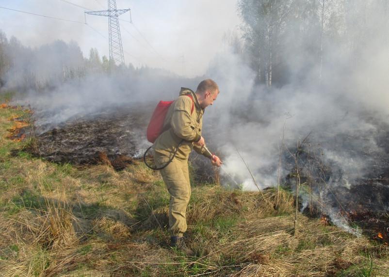 Пожароопасный сезон завершился, но штрафы за открытый огонь остались