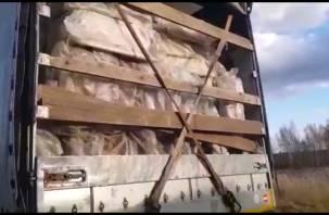 Вместо мебели груши. Пограничники задержали санкционный груз из Беларуси