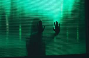 Предприятия-призраки. В Смоленской области заблокировали 16 «фантомных» предприятий