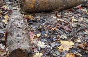 На двух территориях Смоленской области обнаружили взрывоопасные предметы времен войны
