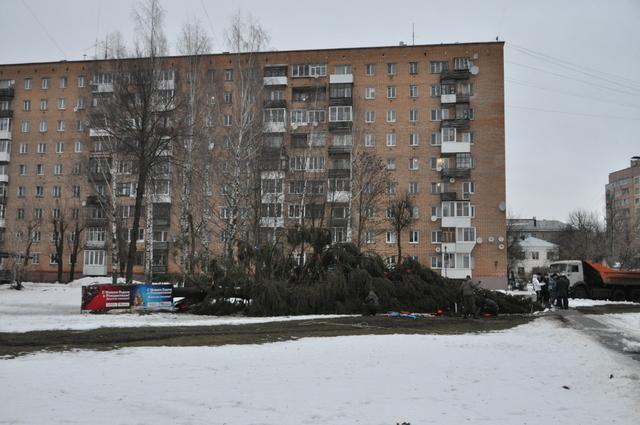 новогодняя елка смоленк