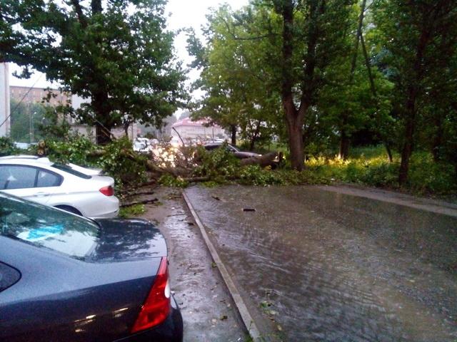 ураганный ветер в Смоленске