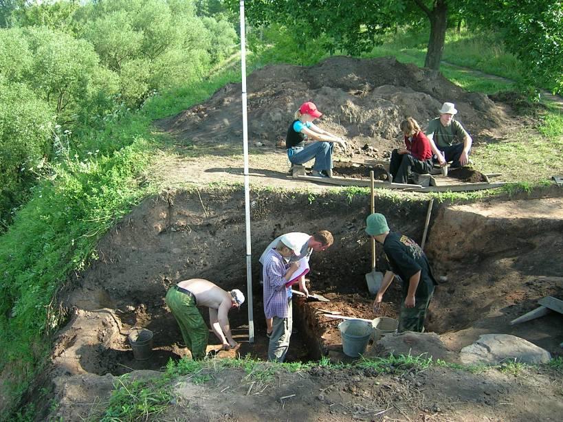 Московские студенты раскопали в гнёздове плетень.
