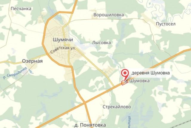 ВСмоленской области рейсовый автобус столкнулся слосем. Есть пострадавшие
