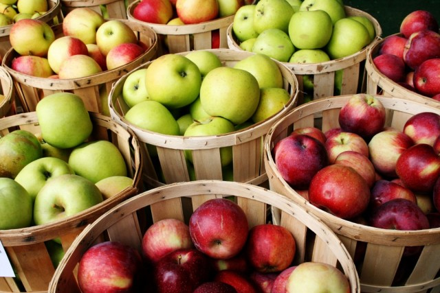 Смоляне представят свои яблоки вКалуге