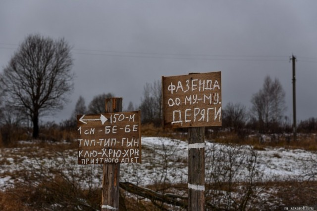 Мордовия— вчисле самых экономически активных регионов Российской Федерации