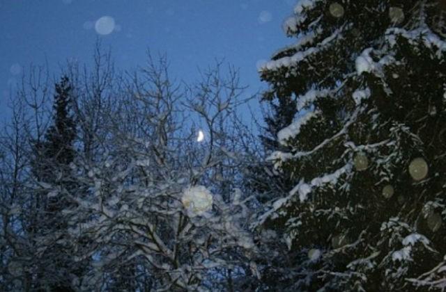Всубботу вСмоленской области похолодает доминус 14-ти