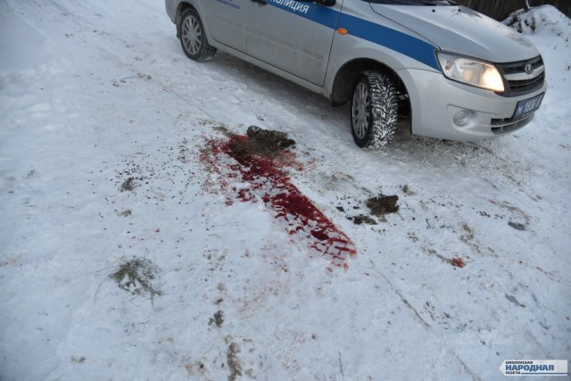 Следователи установили причину смерти жертв бойни вОльше