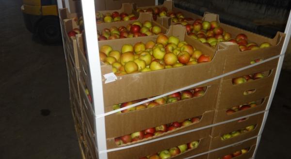 ВРостове уничтожили 20 тонн смоленских яблок