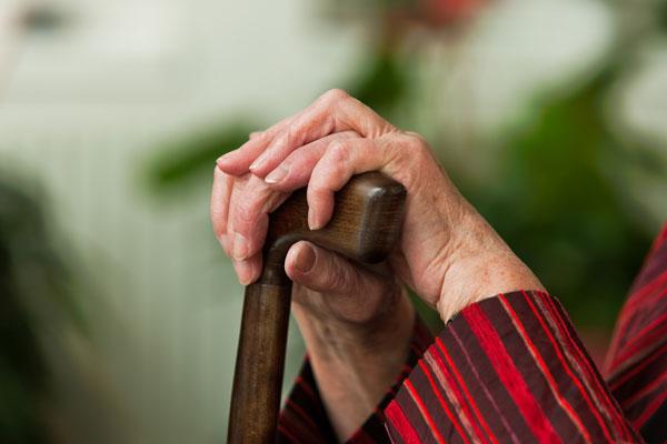 Смолянин хотел уничтожить 89-летнюю мать друга зазамечание