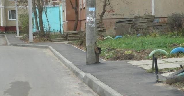 Тот самый столб, стоящий в центре тротуара во дворе на проспекте Металлургов
