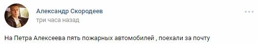петра алексеева