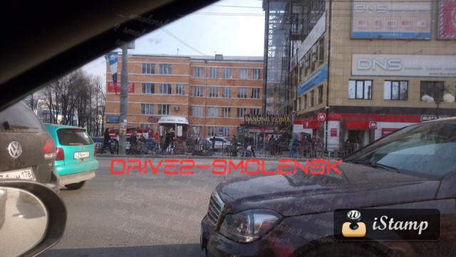 Зебра. Фото: Drive-Smolensk