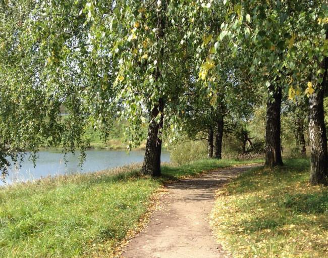 В последний понедельник лета в Смоленской области осадков не ожидается