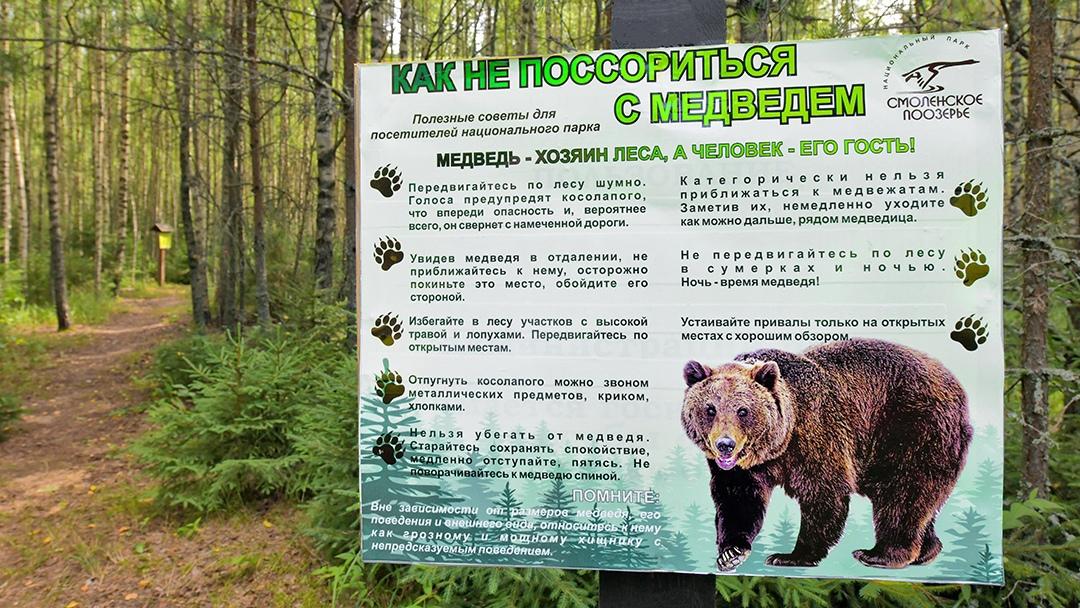 Смолян приглашают по тропе босых прогуляться в царство бурого медведя