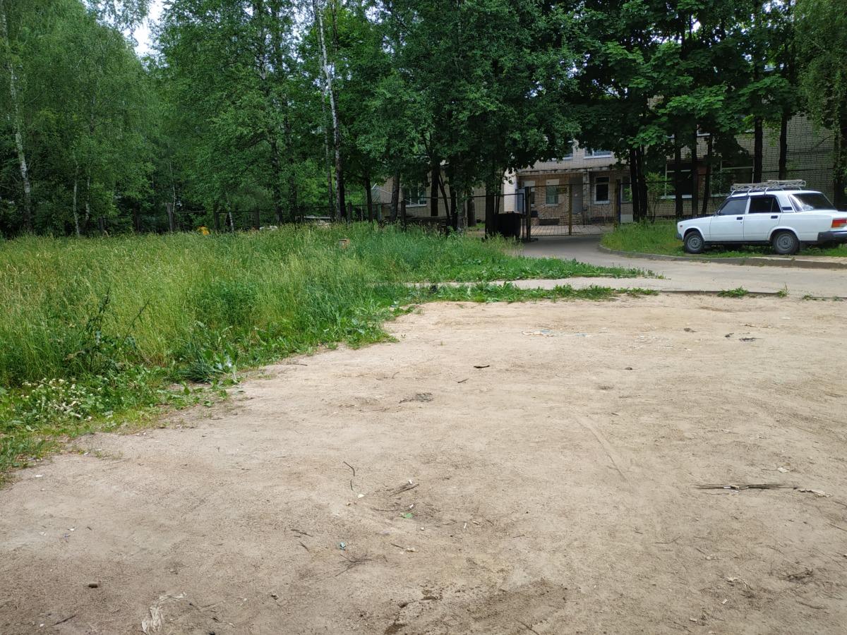 Страшный смрад. Никто не заметил разлагающийся труп возле входа в детский сад в Смоленске